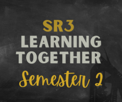 2nd Semester Learning Options